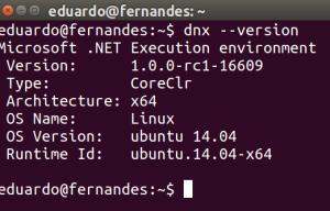 Screenshot do comando dvx --version